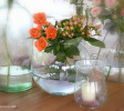 bonsai_06.JPG